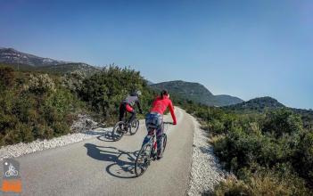 Cycling: Wine route of Peljesac and Oysters